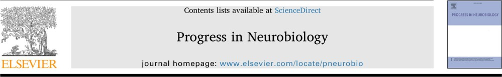 Crowley, Bendor, Javadi - 2019 - Progress in Neurobiology